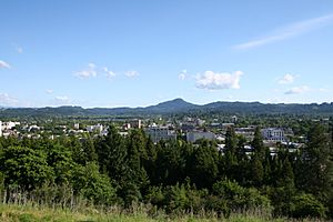 Eugene Oregon from Skinner Butte