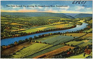 View from Council Cup showing the Susquehanna River, Pennsylvania (38601)