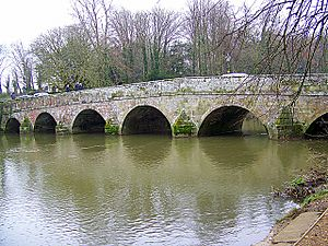 Bridge over the River Stour, Blandford Forum - geograph.org.uk - 1145438