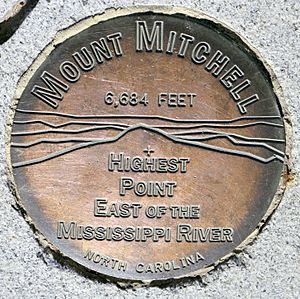 MountMitchellSurveyorsMark
