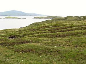 Old lazybeds on North Harris
