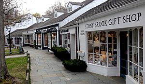Stony Brook Village shops