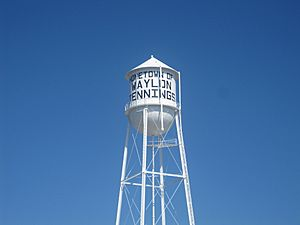 Littlefield, TX Water Tower IMG 4780