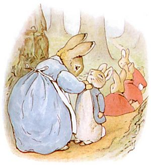 PeterRabbit4