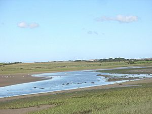 View north across the estuary of Afon Alaw - geograph.org.uk - 762361