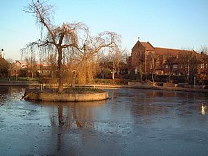 Frozen pond, Feltham Green - geograph.org.uk - 96599