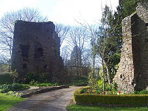 Tiverton , Tiverton Castle Ruins - geograph.org.uk - 1272097