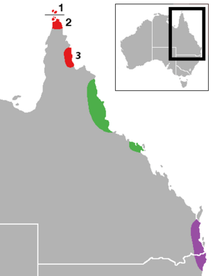 Distribution of Ornithoptera in Australia.png
