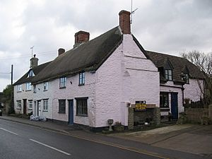 Thatched Cottage at Stalbridge - geograph.org.uk - 133085