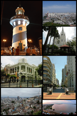 Guayaquil montage