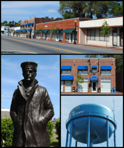 Top, left to right: Downtown Kingsland, statue representing the United States Navy in the Kingsland Veterans Park, Kingsland City Hall, water tower.