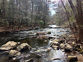 Mianus River Park - Mianus River from west river bank.JPG