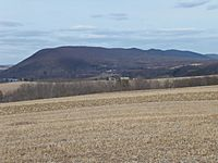 Knob Mountain from the southwest 2.JPG