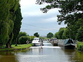 The Lichfield Canal at Huddlesford Junction - geograph.org.uk - 1163861.jpg