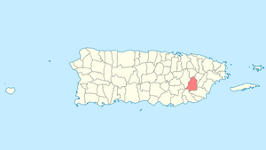 Location of San Lorenzo in Puerto Rico