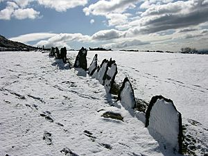 Vacchary Fence in the snow - geograph.org.uk - 752248