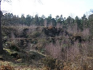 Caesar's Camp - geograph.org.uk - 1181919