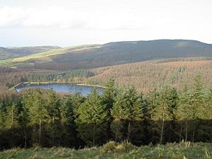 Macclesfield Forest+Trentabank