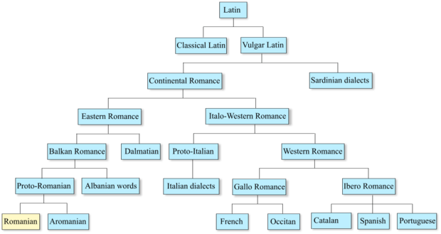 Romance languages and Romanian