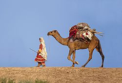 A Balochi woman traveling with her camel
