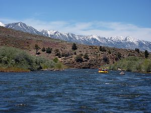 Rafting the East Fork of the Carson River.jpg