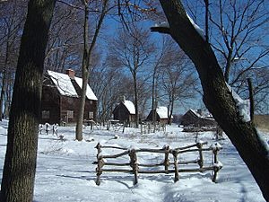 Pioneer Village Winter 2008