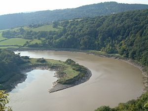 A view north of the River Wye, Lancaut, Chepstow - geograph.org.uk - 18005