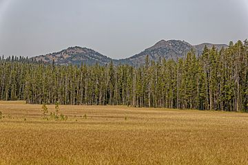 Hedges Peak and Dunraven Peak from Seven Mile Hole Trail.jpg
