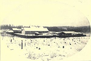 First camp at Fairbanks 1903