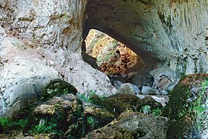A097, Tonto Natural Bridge State Park, Arizona, USA, 2004