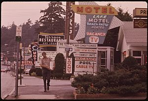 ROW OF MOTELS AT LAKE GEORGE VILLAGE, NEW YORK, AND PLETHORA OF SIGNS CREATES A NON-RUSTIC SCENE IN THE ADIRONDACK... - NARA - 554550