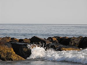 Narragansett Bay surf on the rocks