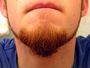 Tiered-goatee