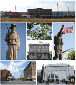 Images from top, left to right: Downtown Waycross, Confederate memorial, alligator in the Okefenokee Swamp, Waycross City Hall, World War I memorial, Downtown Waycross Historic District, Ware County Courthouse