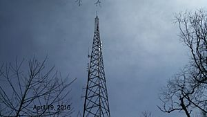 Wm4t amateur radio tower