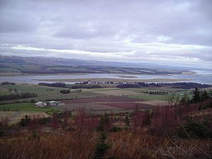 The Tay estuary showing the area around the Roman Fort