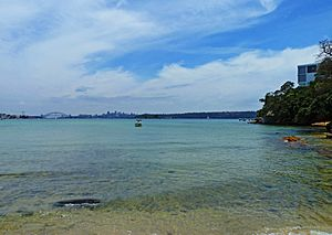 Sydney Harbour, from Dumaresq Road, Rose Bay, New South Wales (2011-01-05) 02