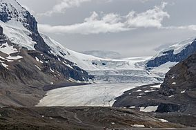 Athabasca Glacier in Jasper National Park is the most accessible and visited glacier in the world.