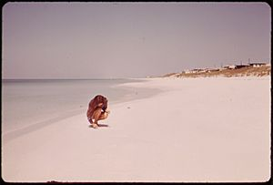 BEACH AT DESTIN, ON THE GULF OF MEXICO - NARA - 548280