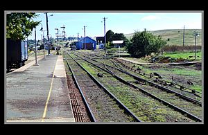 Cooma Railway Yards-1 (8547148758)