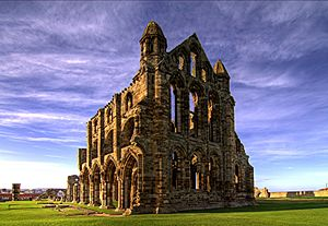 Whitby Abbey image