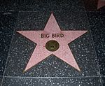 Big Bird Walk of Fame 4-20-06