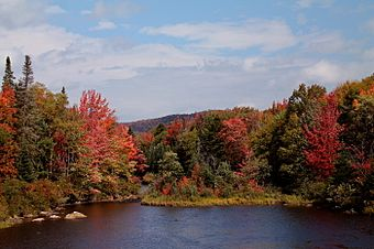 Cedar River in Fall.jpg