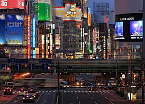 Night in Shinjuku 3