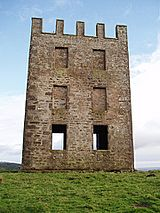 Kinpurnie Tower-geograph-3189161