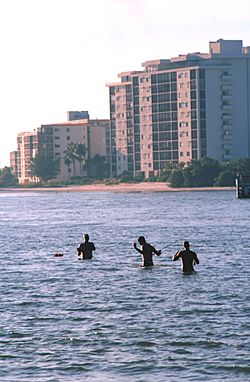 Fishermen wading in Fort Myers Beach
