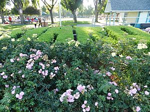 Hayward area recreation and park district topiary