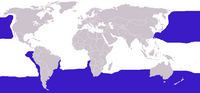 Diomedeidae distribution