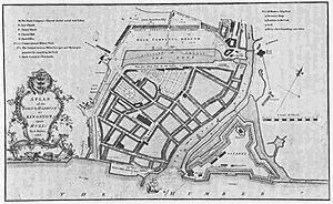 'Plan of the Town and Harbour of Kingston Upon Hull from actual survey by A. Bower, 1786