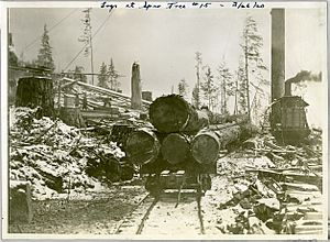Logging in North Vancouver